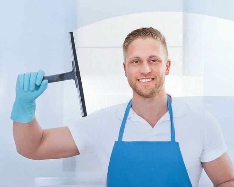 Window cleaning nz