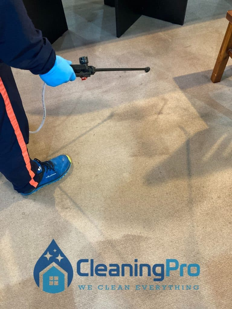 Spraying on Carpet before cleaning it.